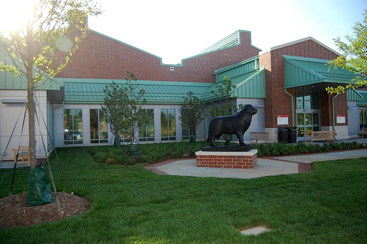 Terry Center Veterinary Hospital NC State University